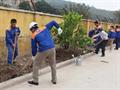 Tết trồng cây 2018 tại K130
