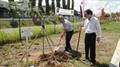 Ngày hội trồng cây vì môi trường
