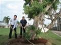 TGĐ Petrolimex Trần Văn Thịnh trồng cây tại Tổng kho Xăng dầu Nhà bè