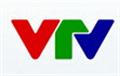 VTV1: Gian lận thương hiệu trong kinh doanh xăng dầu