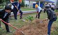 Tết trồng cây 2018 tại Kho Xăng dầu Lào Cai